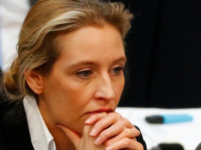 Rechtspopulisten: Staatsanwaltschaft prüft dubiose AfD-Spende aus der Schweiz