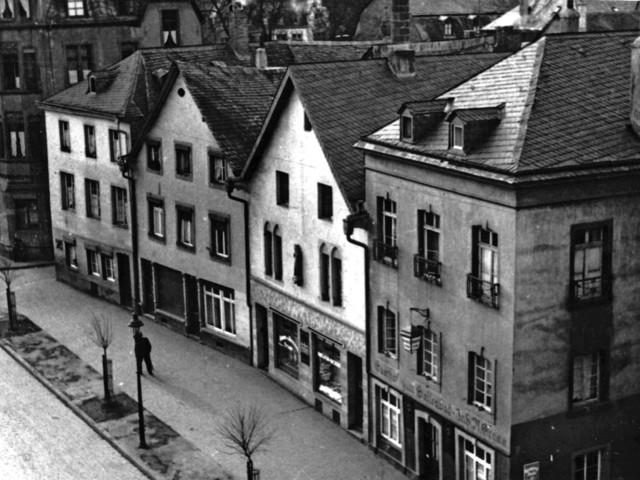 Ein besonderer Fund in Trier: Vom Geheimnis der verschollenen Eidechse