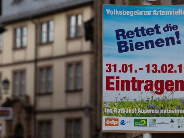 """""""Rettet die Bienen"""": Sieg für die bayerischen Bienenschützer"""