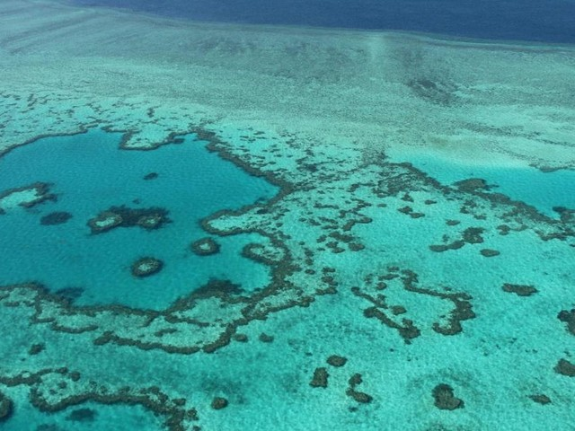 Wie Australien mit Schnorchelausflügen gegen Verlust des Naturerbes ankämpft