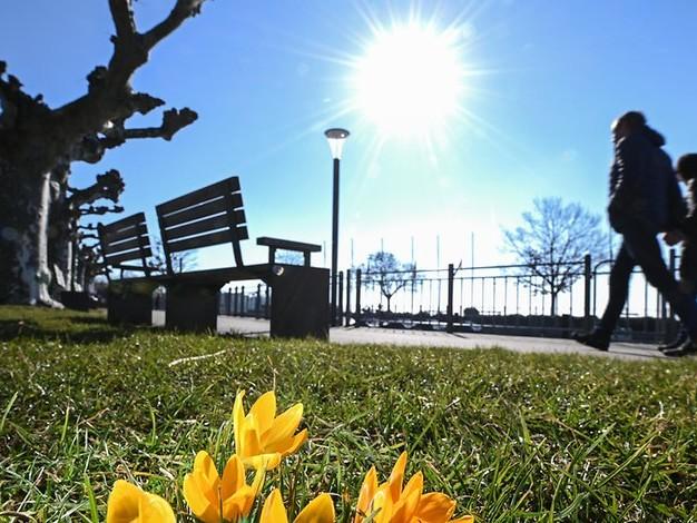 Frühling und Corona: Wie saisonale Effekte auf das Virus wirken