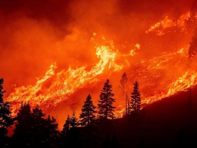Waldbrände bedrohen beliebtes Ausflugsgebiet in Kalifornien