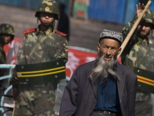 Uiguren-Unterdrückung: Warum deutsche Firmen in Xinjiang investieren