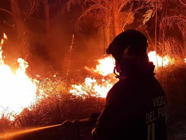 Italien in Flammen: Feuerwehr kämpft landesweit gegen 240Waldbrände