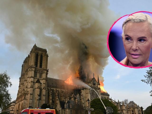 Natascha Ochsenknecht kritisiert hohe Notre-Dame-Spenden!