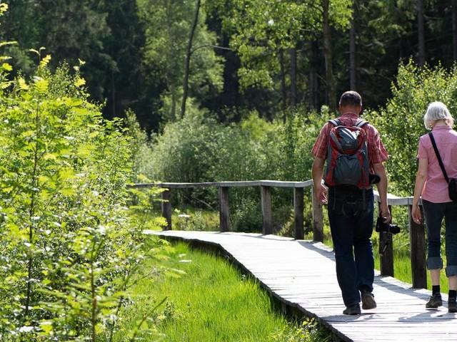 Rucksack, Schuhe, GPS: Elf Tipps für Wander-Neulinge