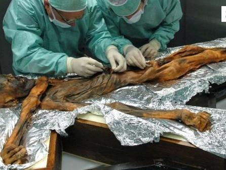 Vor 30 Jahren gefunden:Gletschermumie Ötzi als Weltstar