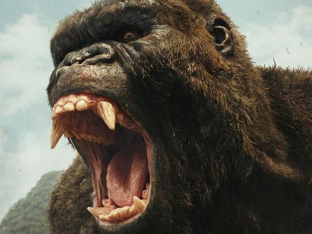 """Cinema Sins: """"Kong: Skull Island""""-Regisseur Jordan Vogt-Roberts flippt auf Twitter aus"""