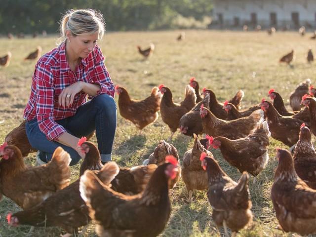 Hühner halten: So klappt die Selbstversorgung in der Stadt!