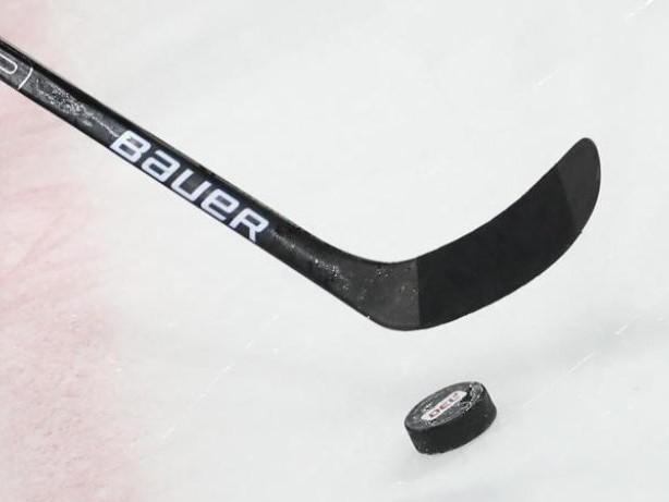 Eishockey: Eisbären Berlin starten vor bis zu 1000 Fans