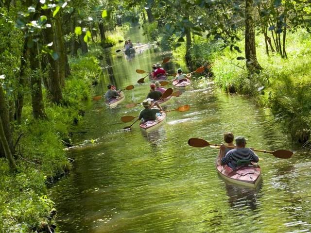 Deutschland: Von der Großstadt in die Natur