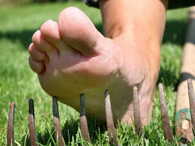 Schutz vor Verletzungen: So überstehen Sie die Gartenarbeit unversehrt