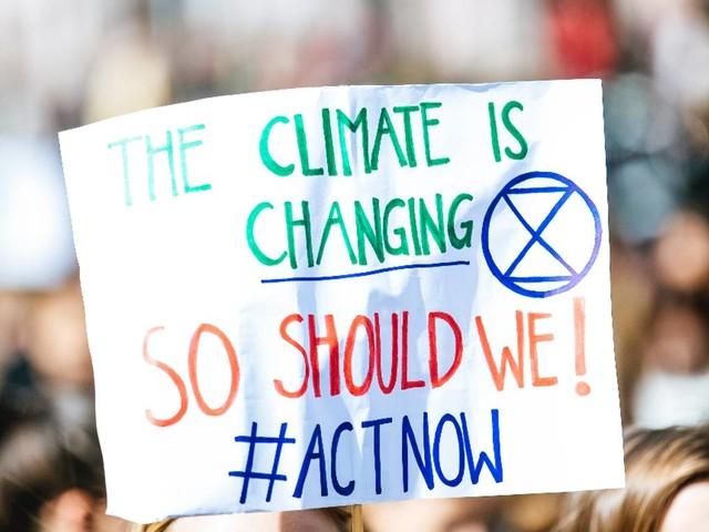 Kompensieren oder reduzieren: Was ist Klimaneutralität und wie erreicht man sie?