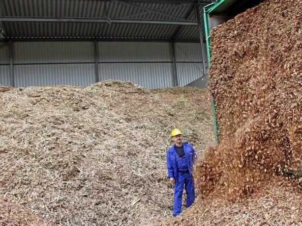Energiewende: Holzheizung: Wie nachhaltig ist Wärme aus Biomasse?