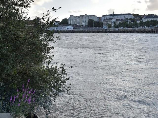 Vermisster tot in Fluss: Verdacht auf Polizeigewalt in Frankreich