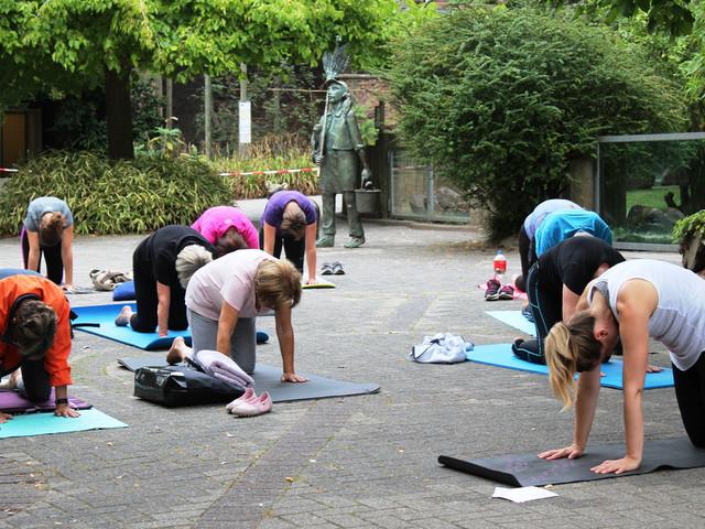 Yoga und Meditation im Mai und August 2019 im Zoo Osnabrück