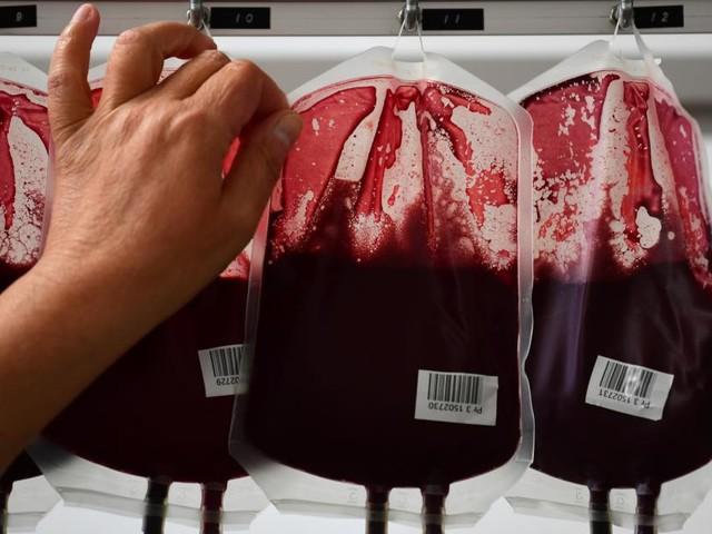 Impfgegener mobilisieren gegen Blutspenden: Warum das problematisch ist