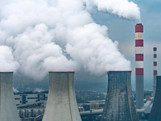 Klimaschutz: Energieagentur kritisiert SUV-Boom