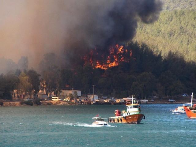 Waldbrände in der Türkei: Vier Tote in Urlaubsregion Antalya