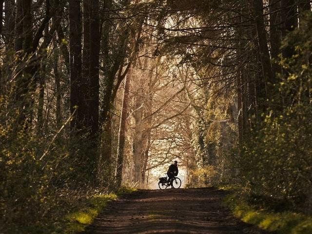 Rose Bikes: Kollektion mit Drykorn und Ausbau zur Plattform