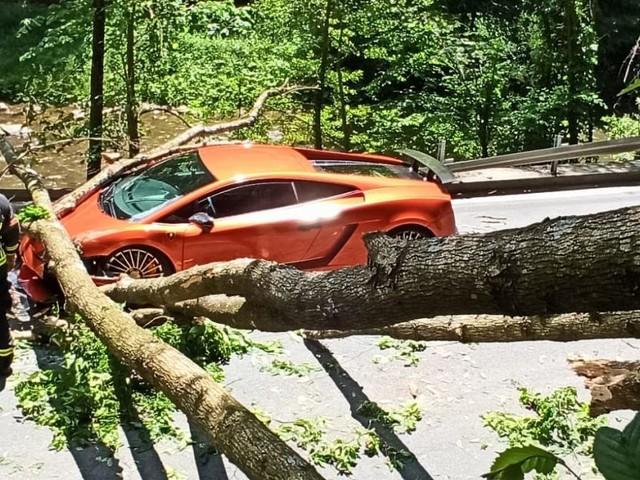 Steiermark: Baum auf Lamborghini gestürzt