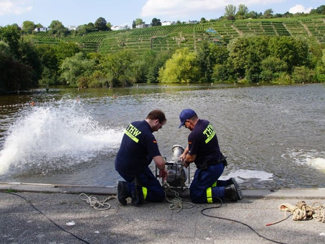Nach dem Fischsterben in Stuttgart: Max-Eyth-See stabilisiert sich