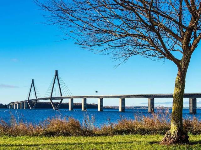 Tempolimits in Dänemark: So schnell dürfen Sie mit Auto, Wohnwagen & Co. auf den Straßen fahren