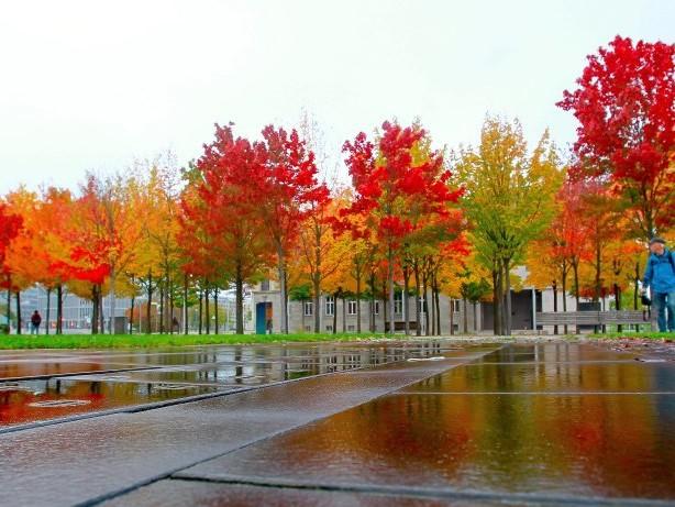 Mein Berlin: Ugg-Boots, Kürbis-Latte und Regen – Herbst, verschone uns