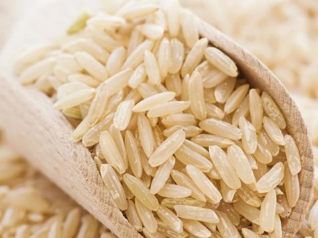 """""""ÖsterReis"""": Lokaler Reisanbau in Österreich nimmt Fahrt auf"""