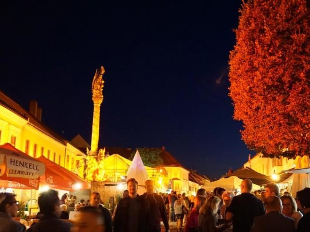 57 Aussteller bei Wein & Genusstagen in Eisenstadt