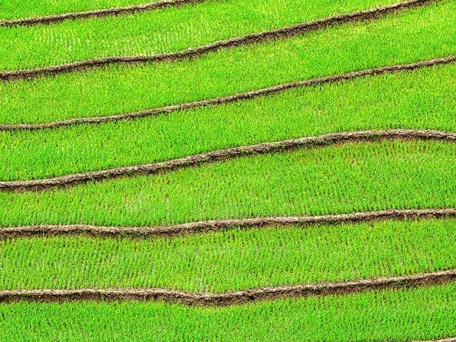 Tief durchatmen bitte! Wie Textilunternehmen ihre CO2-Emissionen und die ihrer Lieferanten senken können