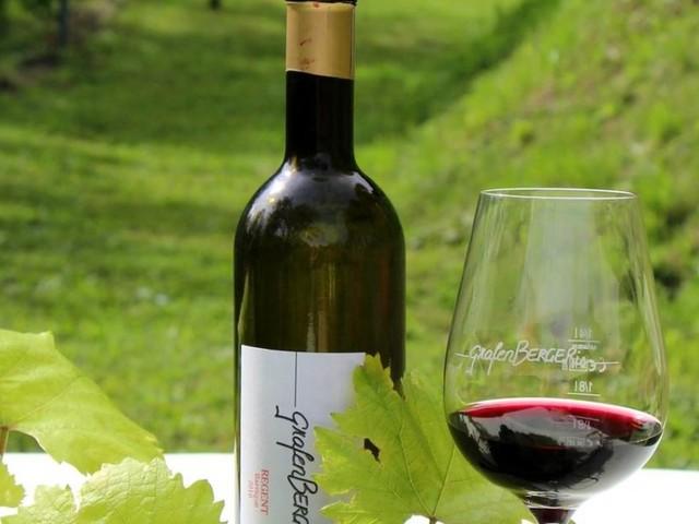 Wo Weinreben wachsen und Enzian blüht: Weinbau in Tirol und Kärnten