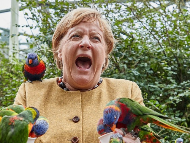 Autsch! Hier wird Bundeskanzlerin Angela Merkel von einem Vogel gebissen