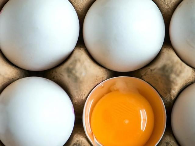 Woher stammt das Ei in den Nudeln?