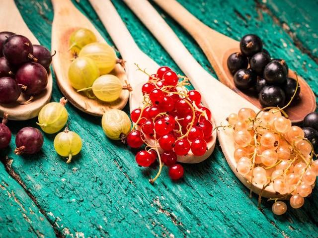 Obstgehölze im Juli: Diese Exemplare brauchen noch schnell einen Rückschnitt