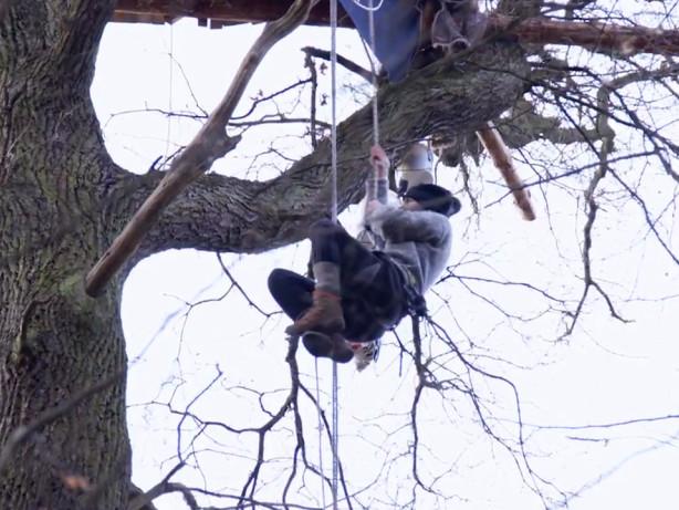 Proteste: Hambacher Forst: So leben die Aktivisten im Wald
