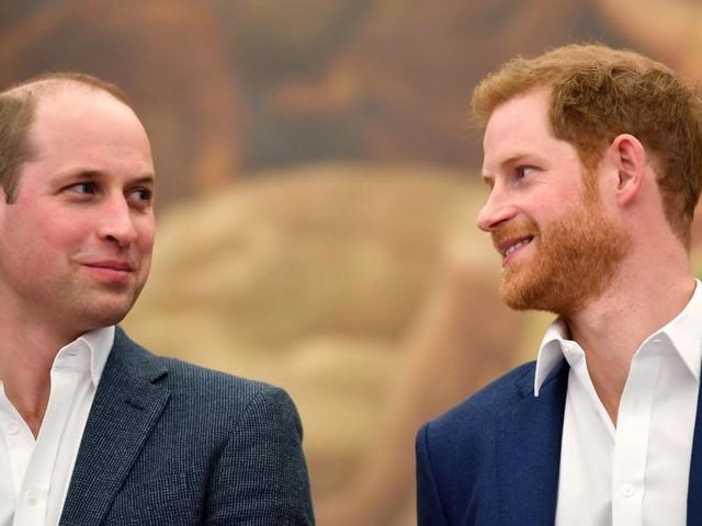 Prinz William will nicht mehr schweigen
