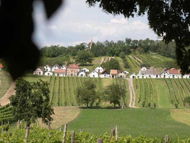 Zu Besuch in den Kellergassen: Wo der Wein wohnt