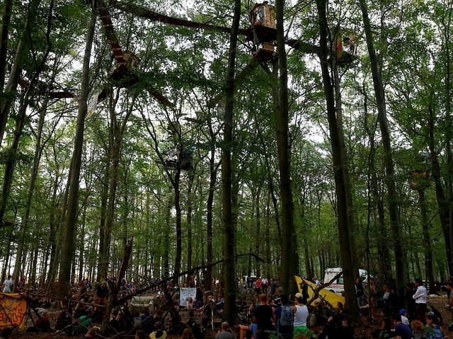 Streit um Hambacher Forst: RWE rechnet mit Rodungsstopp bis Ende 2020