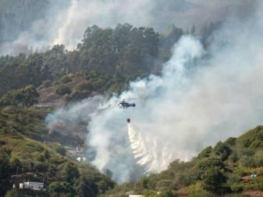 """Experten stufen Waldbrand auf Gran Canaria als """"Umwelt-Tragödie"""" ein"""