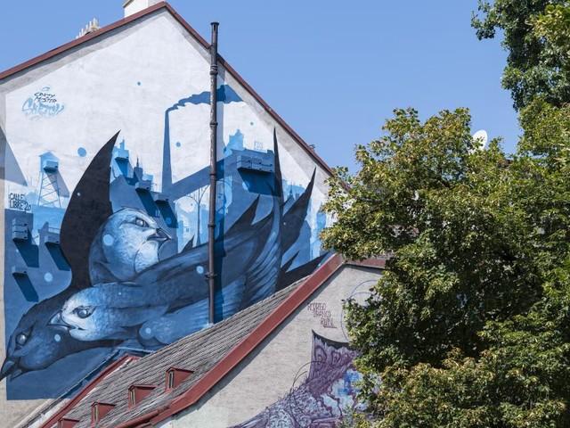 Calle Libre: Wenn Mauern von der perfekten Zukunft erzählen