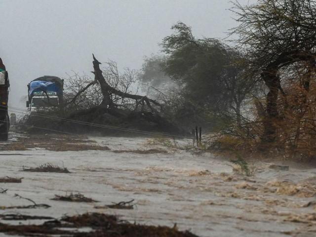 """Mindestens 20 Tote durch Zyklon """"Tauktae"""" in Indien"""