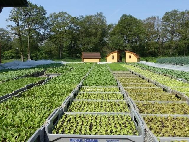Wie ein Saerbecker Biohof Qualität und Hightech vereint