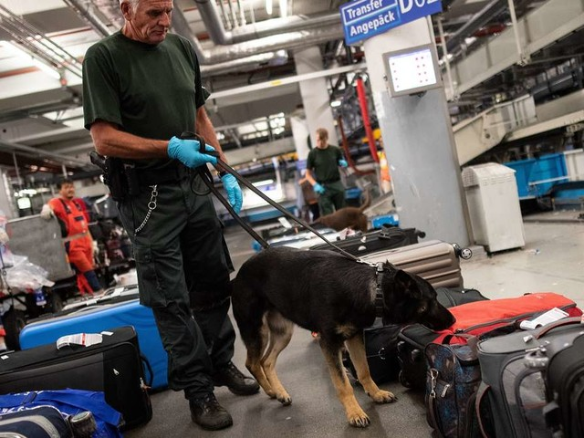 Gepäck an Flughafen-Zoll gefilzt - was ans Licht kommt, ist zum Davonlaufen