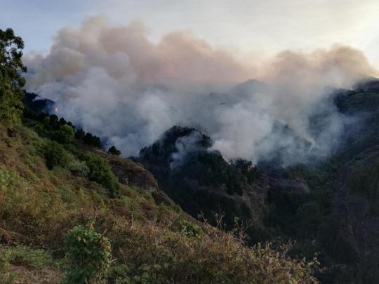 Gran Canaria - Bewohner kehren nach Waldbrand in Häuser zurück