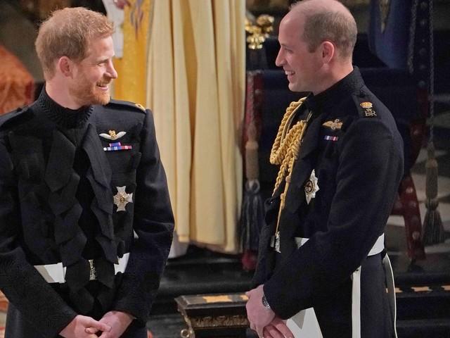 Lady Dianas Butler: Harry und William sind unzertrennlich