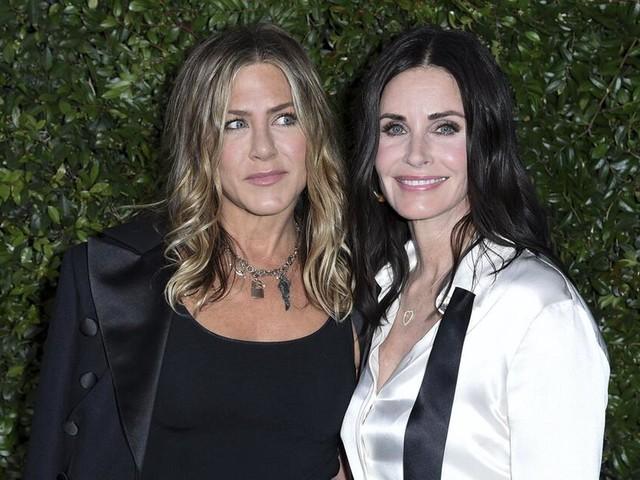 """Privatjet mit """"Friends""""-Stars Aniston und Cox muss notlanden"""