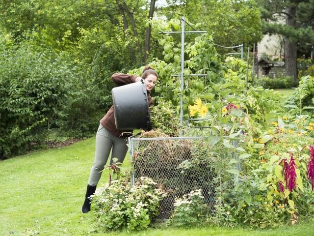 Bevor der Herbst kommt: Das ist jetzt im Garten zu tun