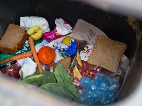 Neues Gesetz nimmt Lidl, Penny & Co. in die Pflicht: Tschechien setzt wichtiges Zeichen gegen Lebensmittelverschwendung