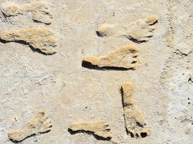 23.000 Jahre alte Fußspuren: Amerika viel früher besiedelt als gedacht